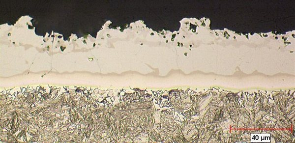 Appearance of the coating after hot stamping (optical microscopy)